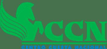 Retailer Profile Centro Cuesta Nacional República Dominicana 2020